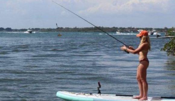 rastreadores de peces