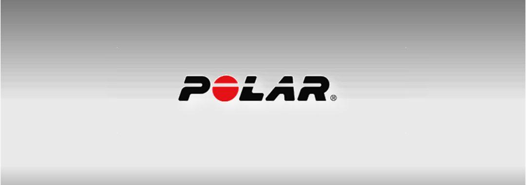ofertas polar